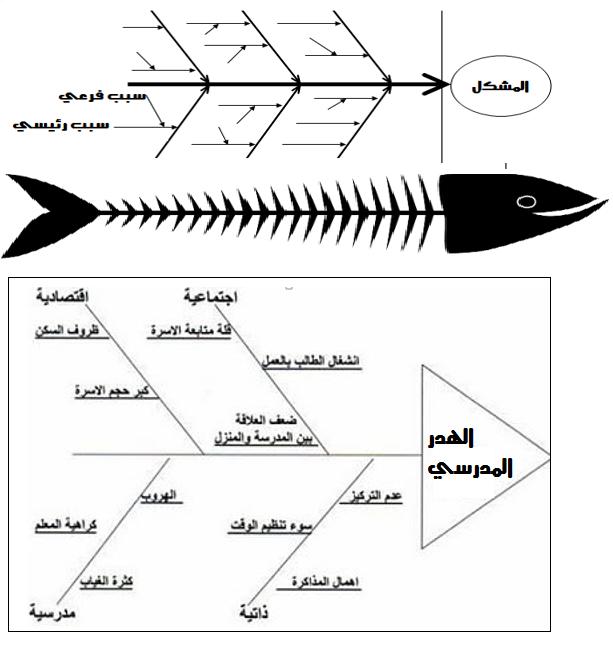 جهات مانحة بالخط العريض ثياب داخلية مخطط السمكة Castello Della Marsiliana Com
